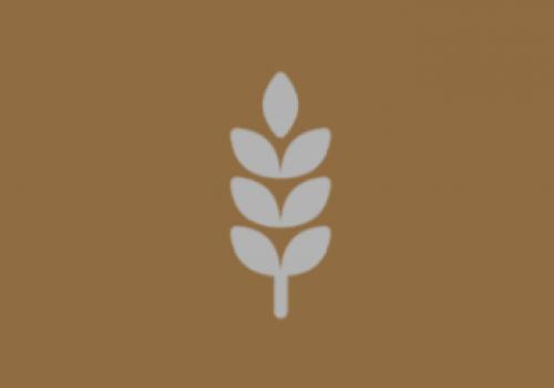 Diario Agricolo