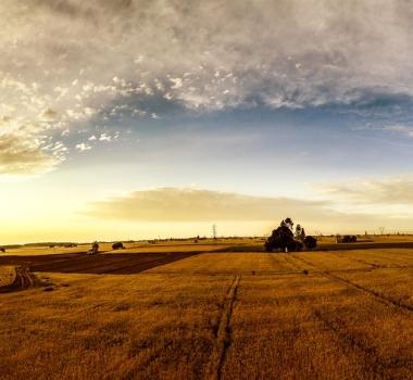 App di produzione per Agricoltura